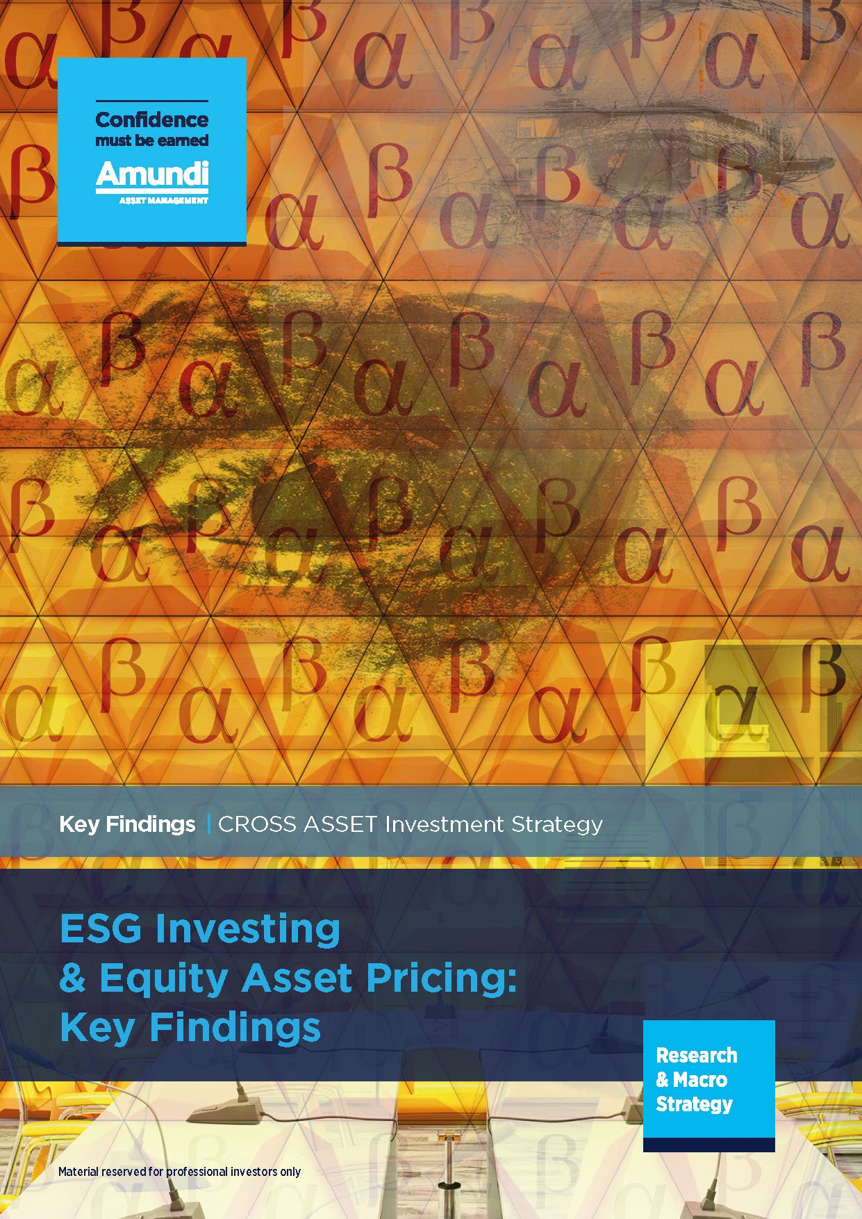 Pages from 2019.01 - ESG investing and equity asset princing_ key findings - EN