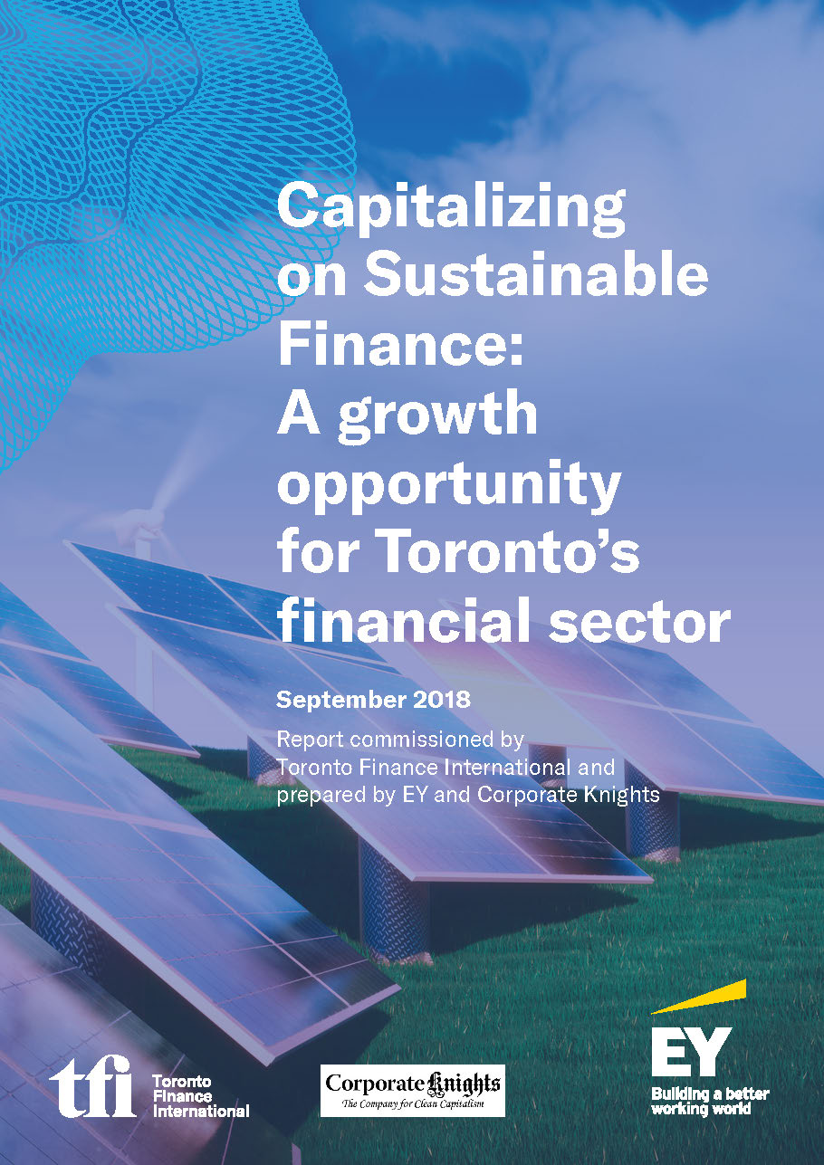 Pages from TFI_Sustainable Finance_Final Report (16.09.2018)